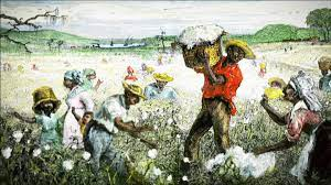 The Story of Cotton in America and How it is linked to Cotton Production India